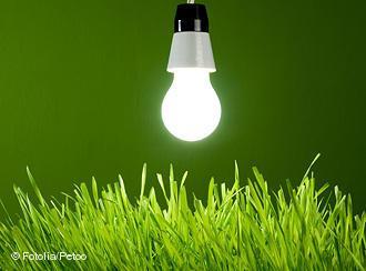 Yeşil Enerji Evrimi