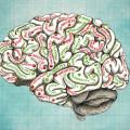 Dolu Beyin